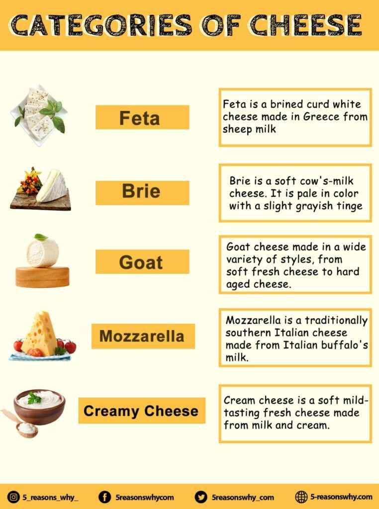 Cheese uses for Weight Gain is The Best Food