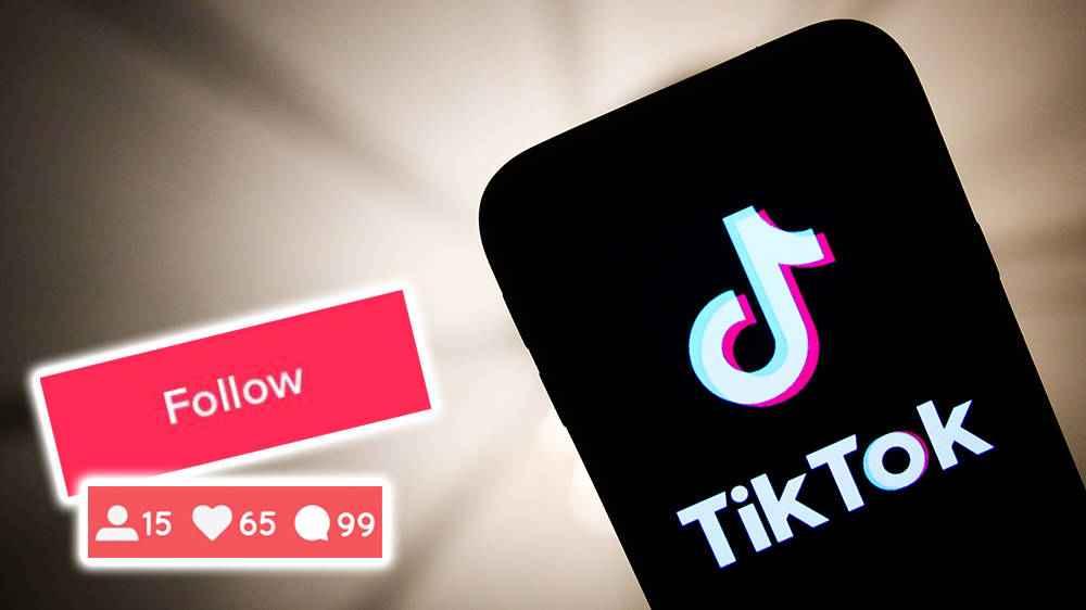How to gain followers on TikTok
