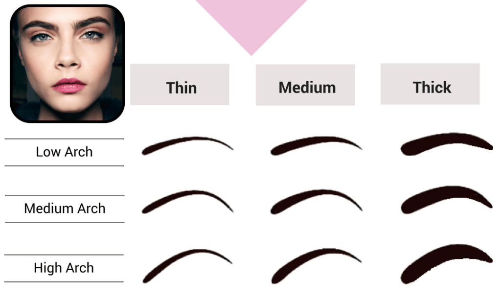 Thin Vs. Thick Eyebrows