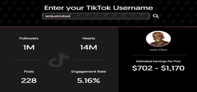 What exactly the igface TikTok money calculator Does